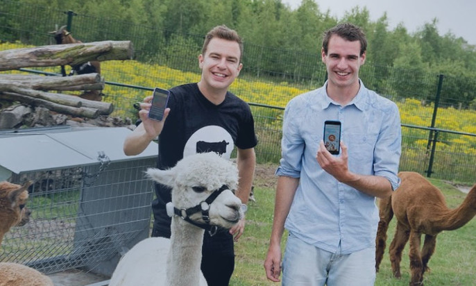Beaconized Alpacas Are Probably The Most Adorable Use Case You've Ever Seen