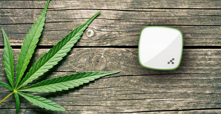 Marijuana Plant Tracking Needs Bluetooth Beacons